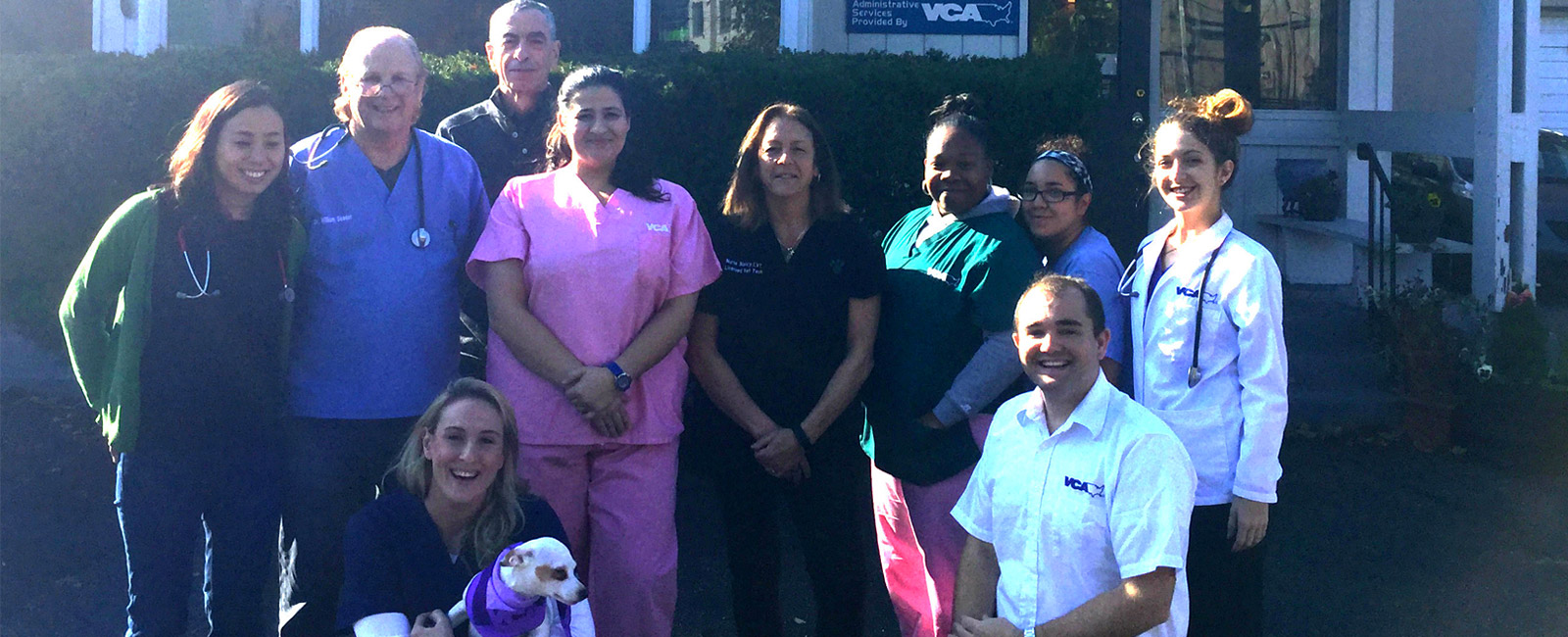 Team Picture of VCA Glen Animal Hospital