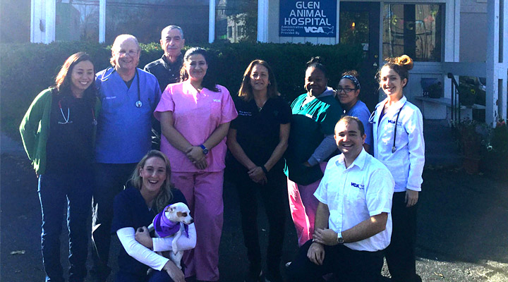 Homepage Team Picture of VCA Glen Animal Hospital