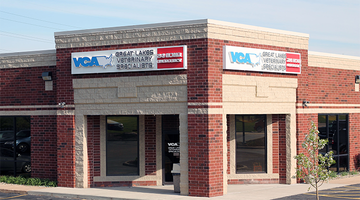 Image of: Animal Hospital Caring For Pets And Their People Too Welcome To Vca Great Lakes Veterinary Vca Animal Hospitals Veterinarians In Warrensville Heights Oh Vca Great Lakes