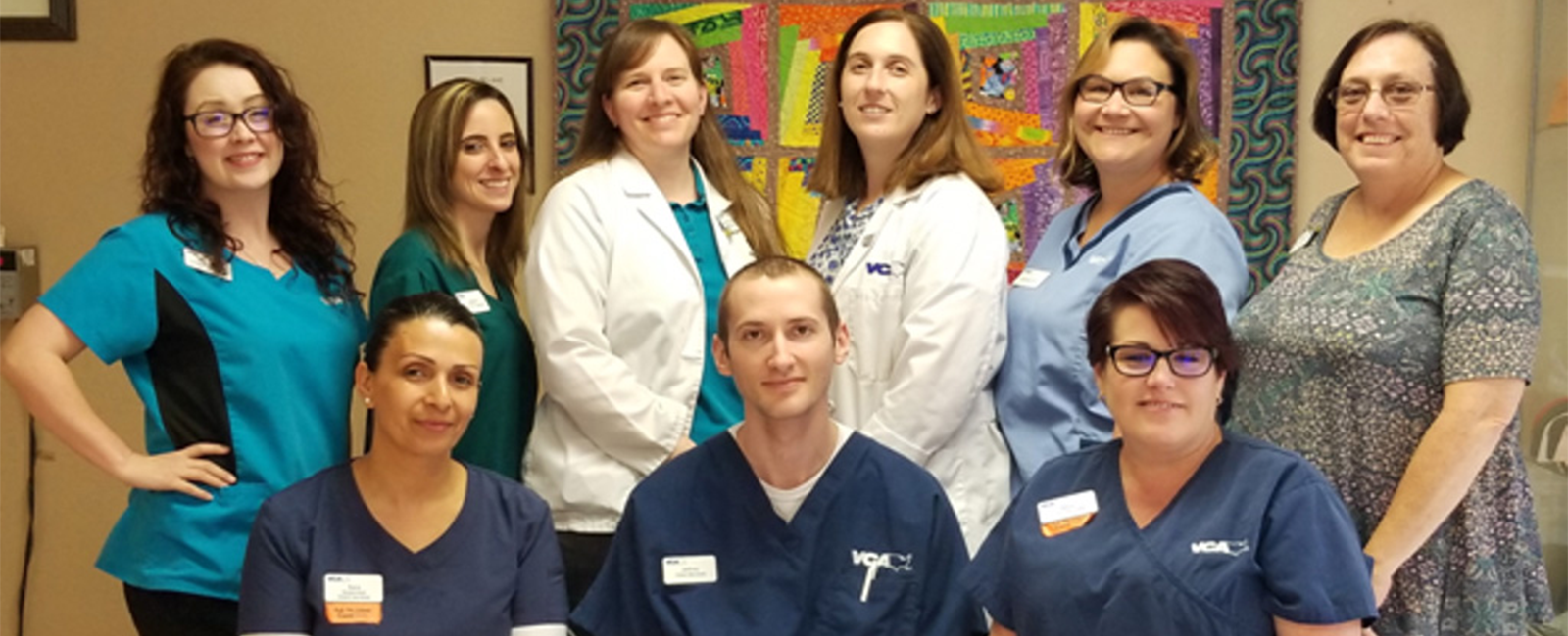 Homepage Team Picture of VCA Greenback Animal Hospital