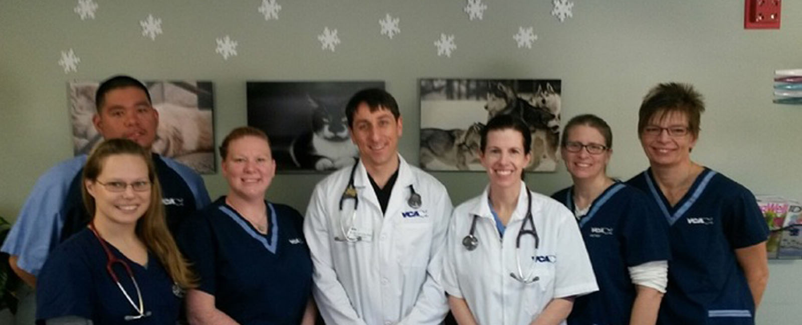 Homepage Team Picture of VCA Hawthorn Animal Hospital