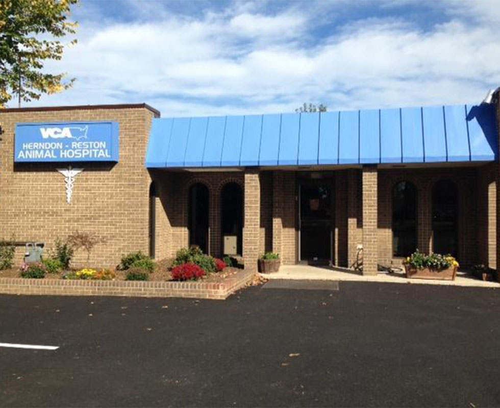 Hospital Picture of VCA Herndon-Reston Animal Hospital