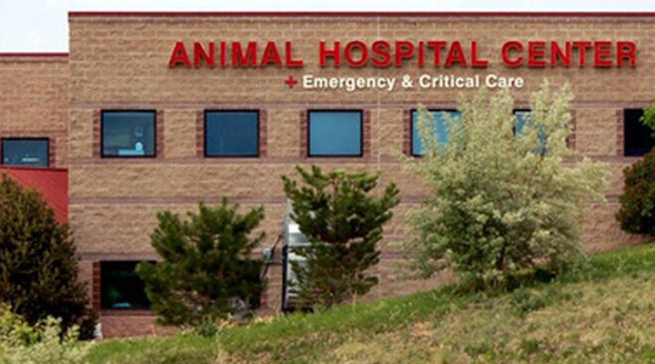 Homepage Hospital Picture of VCA Highlands Ranch Animal Specialty and Emergency Center