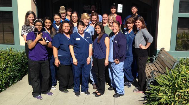 Team Picture of VCA Holly Street Animal Hospital