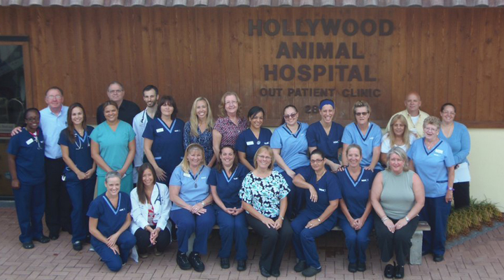 Team Picture of VCA Hollywood Animal Hospital