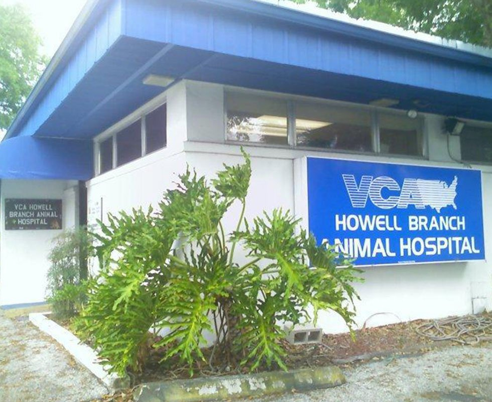 VCA Howell Branch Animal Hospital - Our Hospital