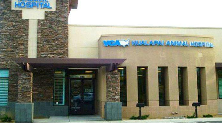 Homepage Hospital Picture of VCA Hualapai Animal Hospital
