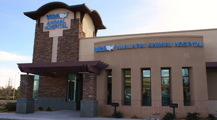 Hospital Picture of VCA Hualapai Animal Hospital