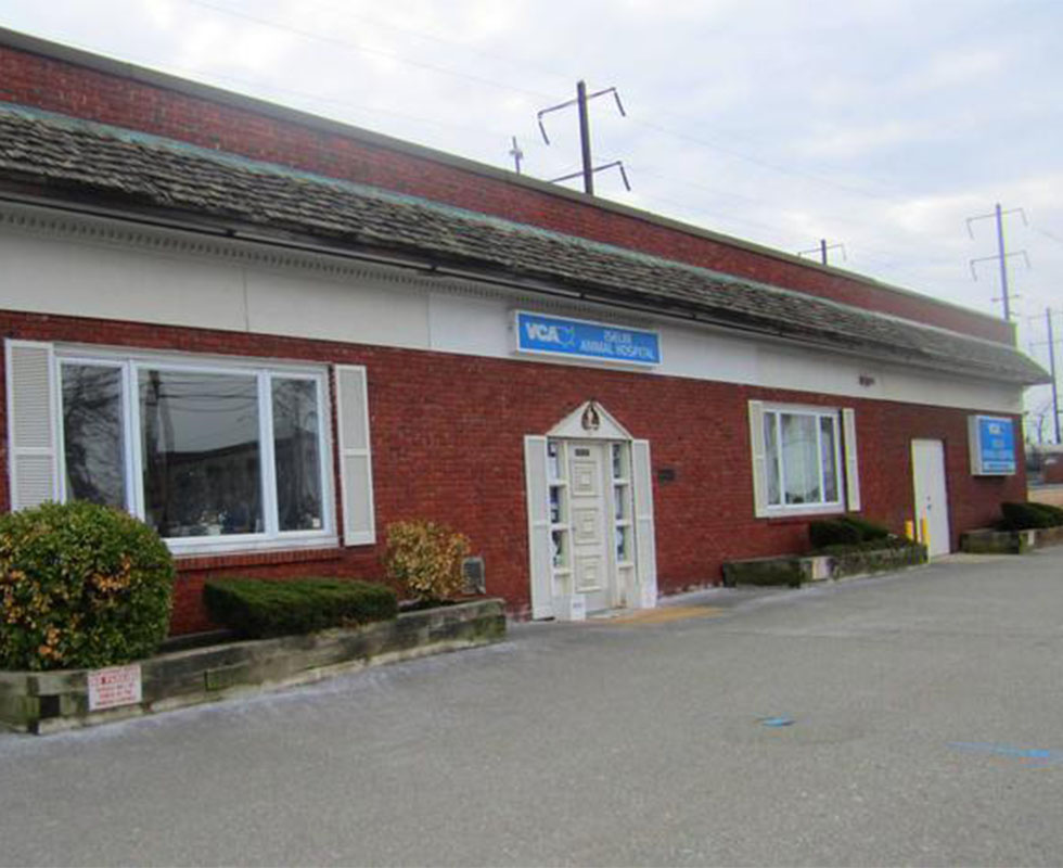 Hospital Picture of VCA Iselin Animal Hospital