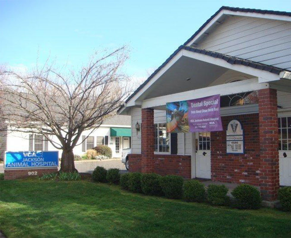Hospital Picture of VCA Jackson Animal Hospital