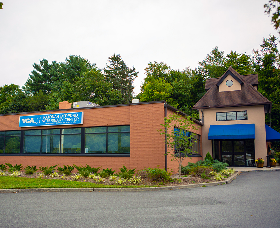 Katonah Bedford Animal Hospital