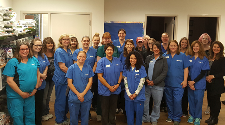 Homepage Team Picture of VCA Kickingbird Animal Hospital