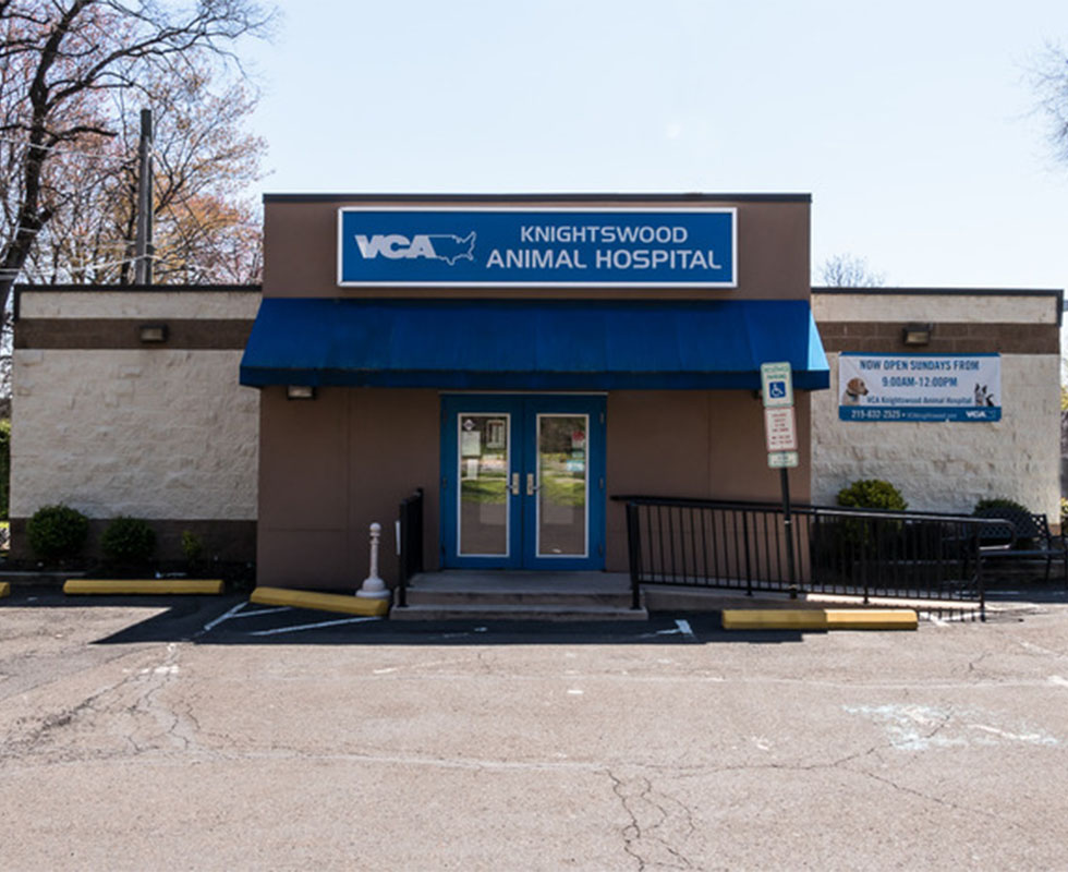 Hospital Picture of VCA Knightswood Animal Hospital
