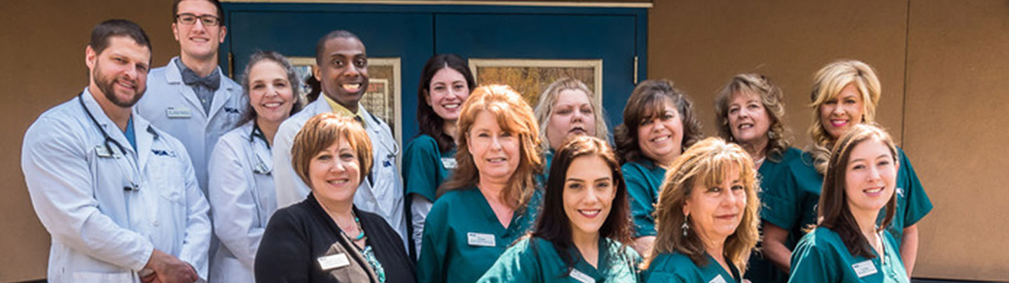 Team Picture of VCA Knightswood Animal Hospital