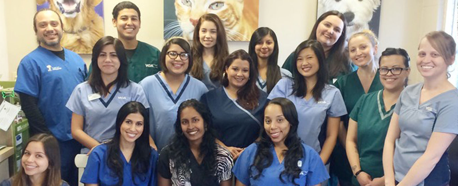 Homepage Team Picture of VCA La Mirada Animal Hospital