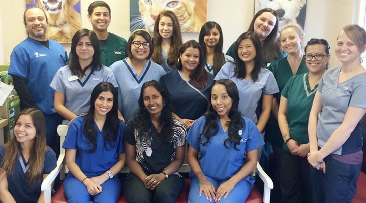 Team Picture of VCA La Mirada Animal Hospital