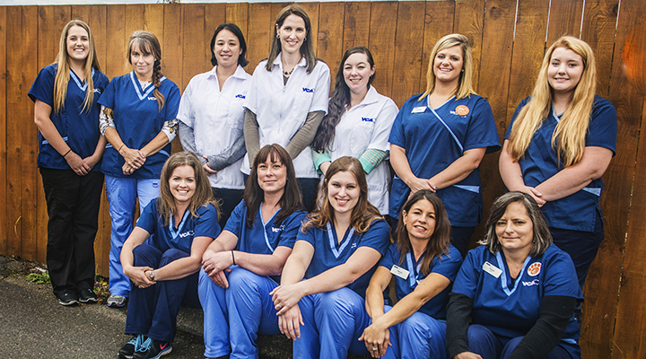 Team Picture of VCA Lacey Animal Hospital