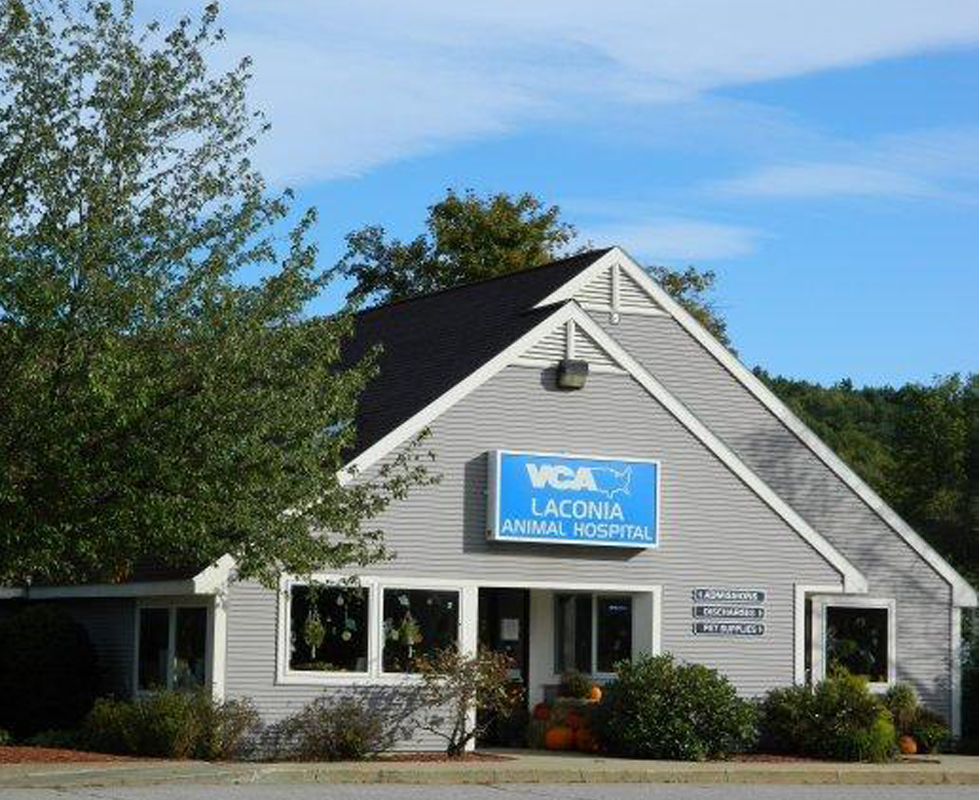 Hospital Picture of VCA Laconia Animal Hospital