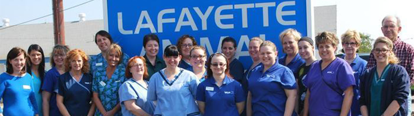 VCA Lafayette Animal Hospital - Our Team