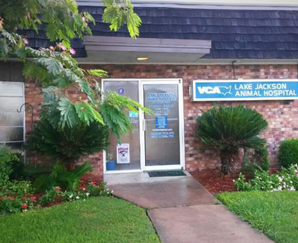 Hospital Picture of VCA Lake Jackson Animal Hospital