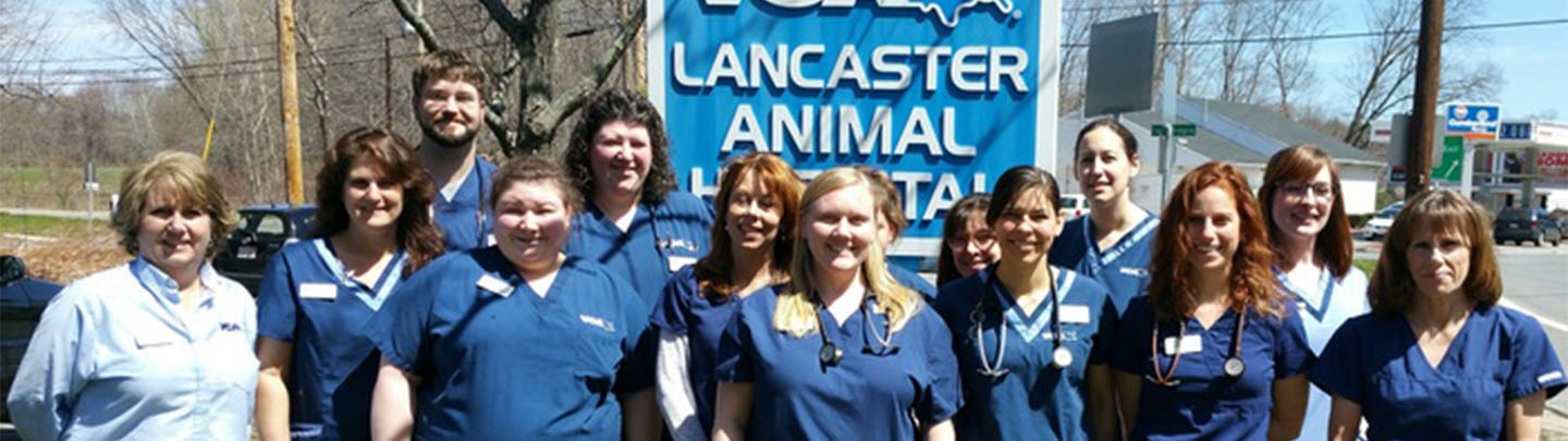 Hospital Picture of VCA Lancaster Animal Hospital