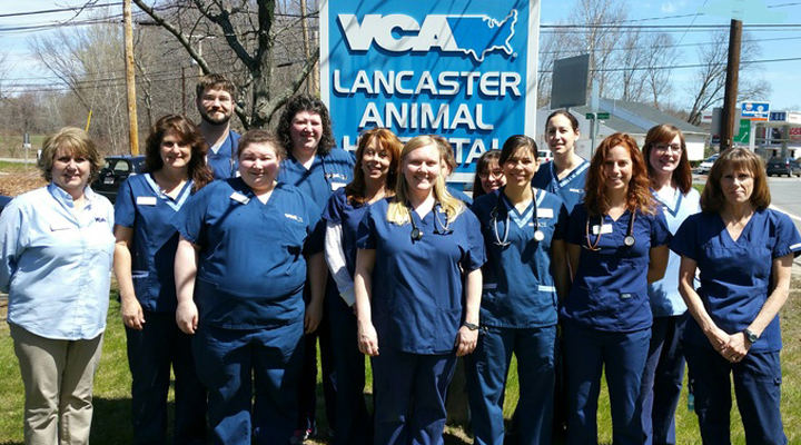 Team Picture of VCA Lancaster Animal Hospital