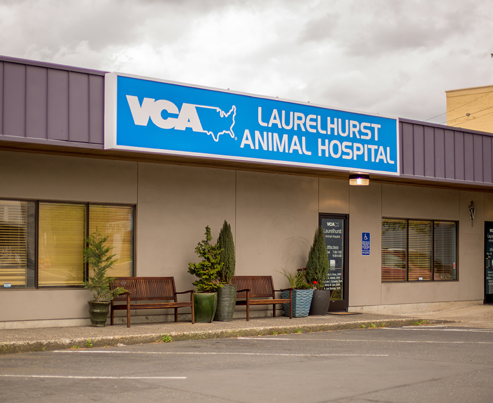 Hospital Picture of VCA Laurelhurst Animal Hospital