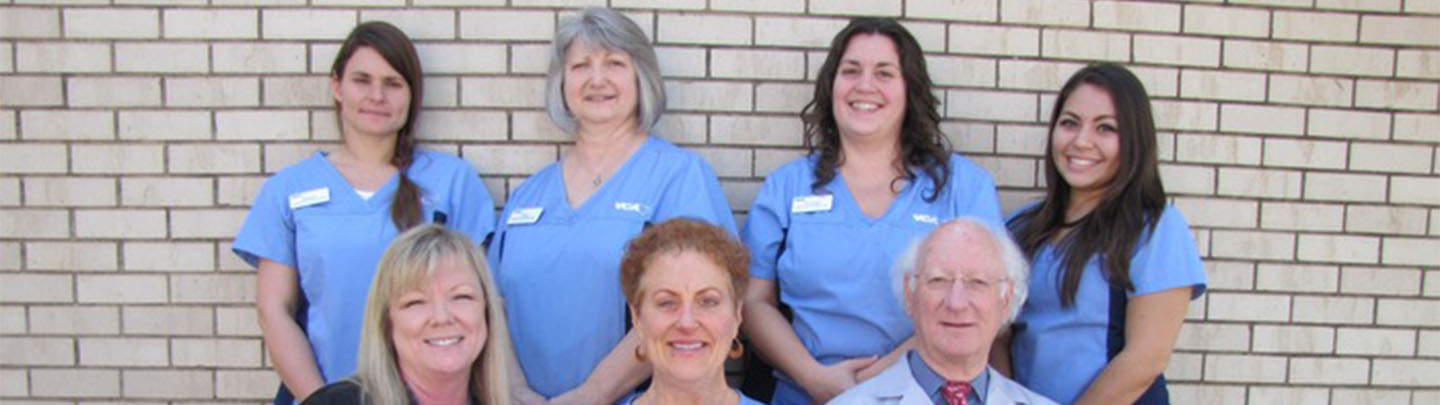 Team Picture of VCA Lindley Animal Hospital