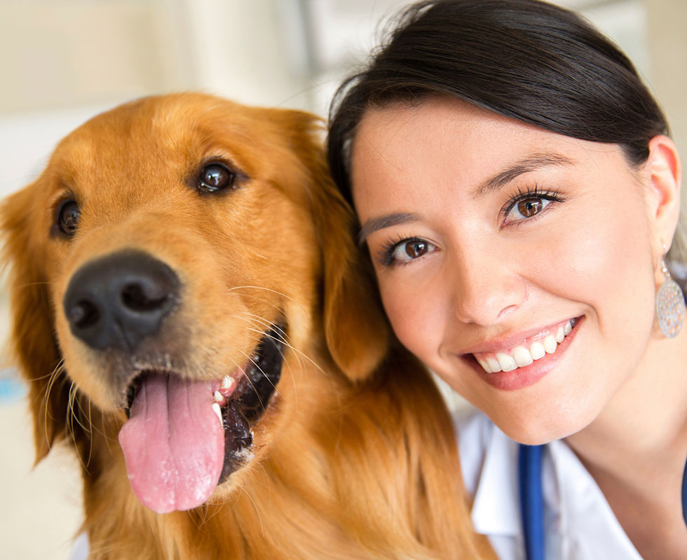 Veterinarian and dog smiling