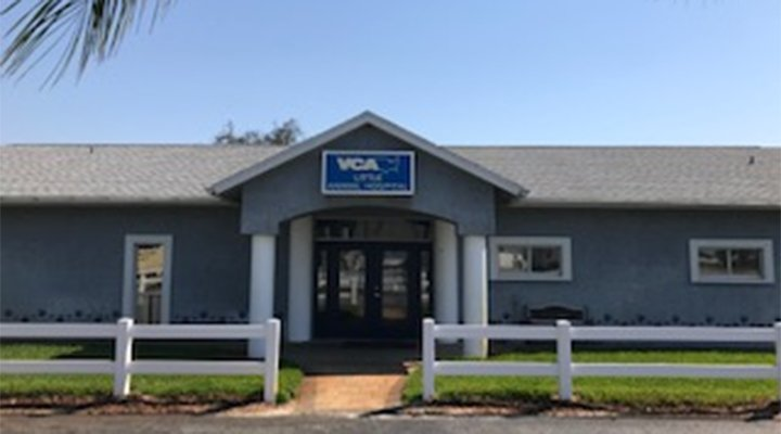 VCA Little Animal Hospital