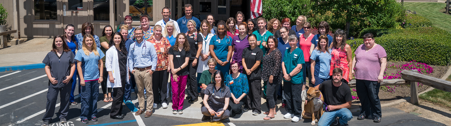 Team Picture of VCA Loomis Basin Animal Hospital