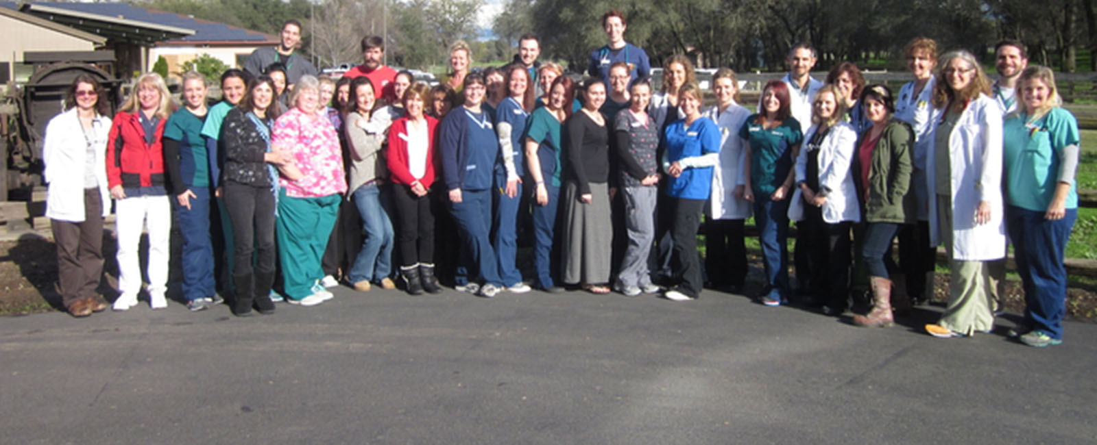 Homepage Team Picture of VCA Loomis Basin Veterinary Clinic