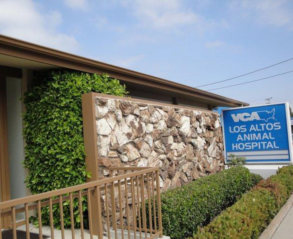 Hospital Picture of  VCA Los Altos Animal Hospital