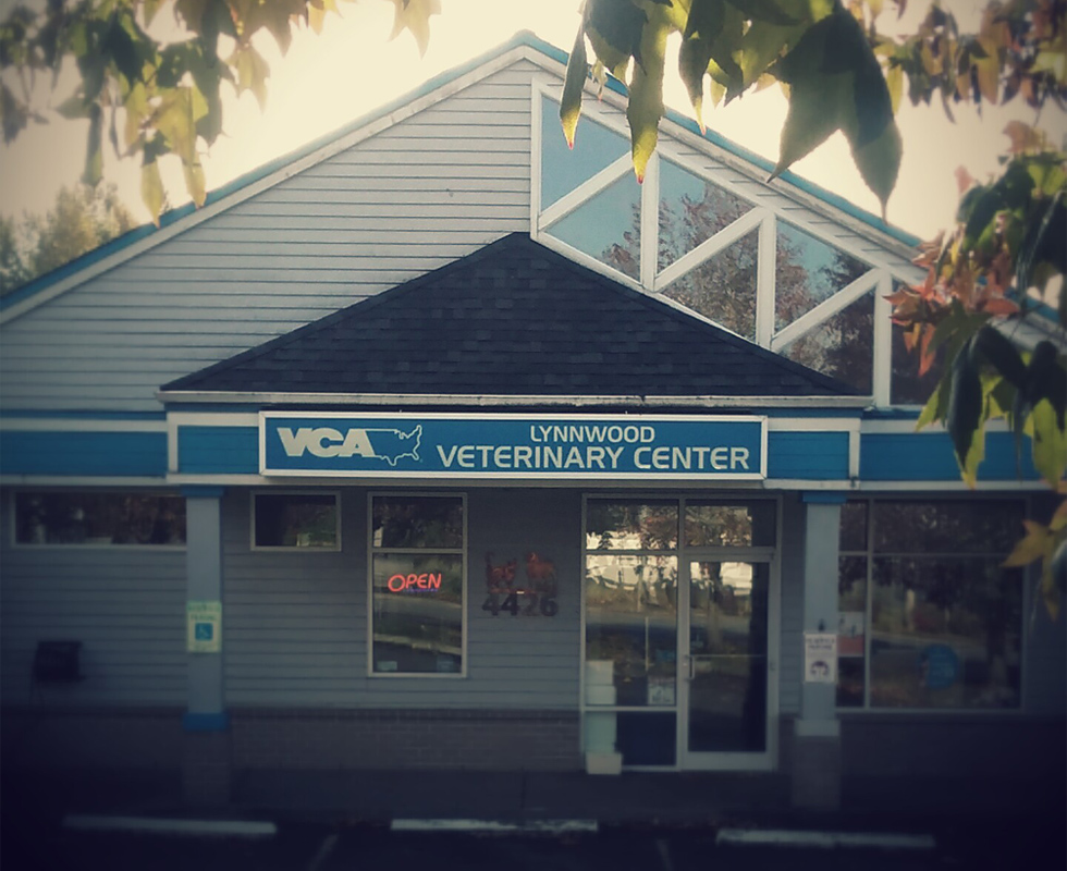 Hospital Picture of VCA Lynnwood Veterinary Center