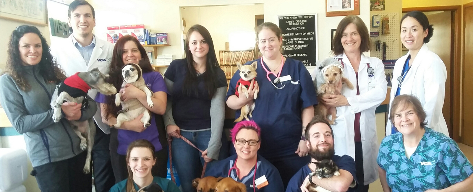 Team Picture of VA Lynnwood Animal Hospital