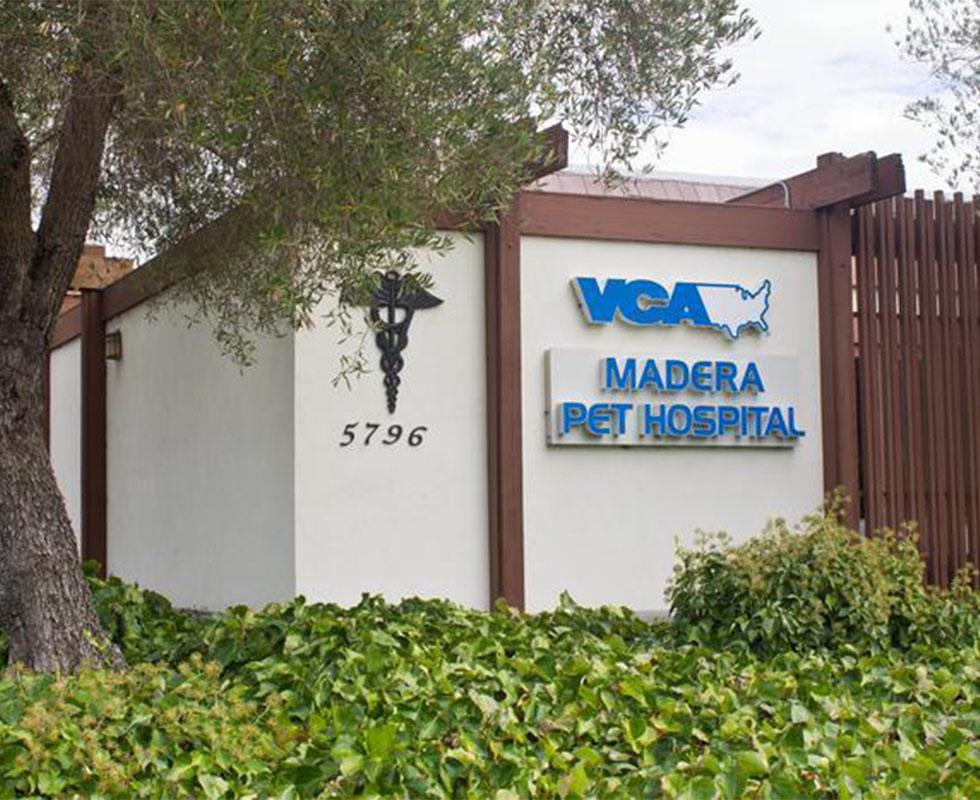 Our Hospital | VCA Madera Pet Hospital