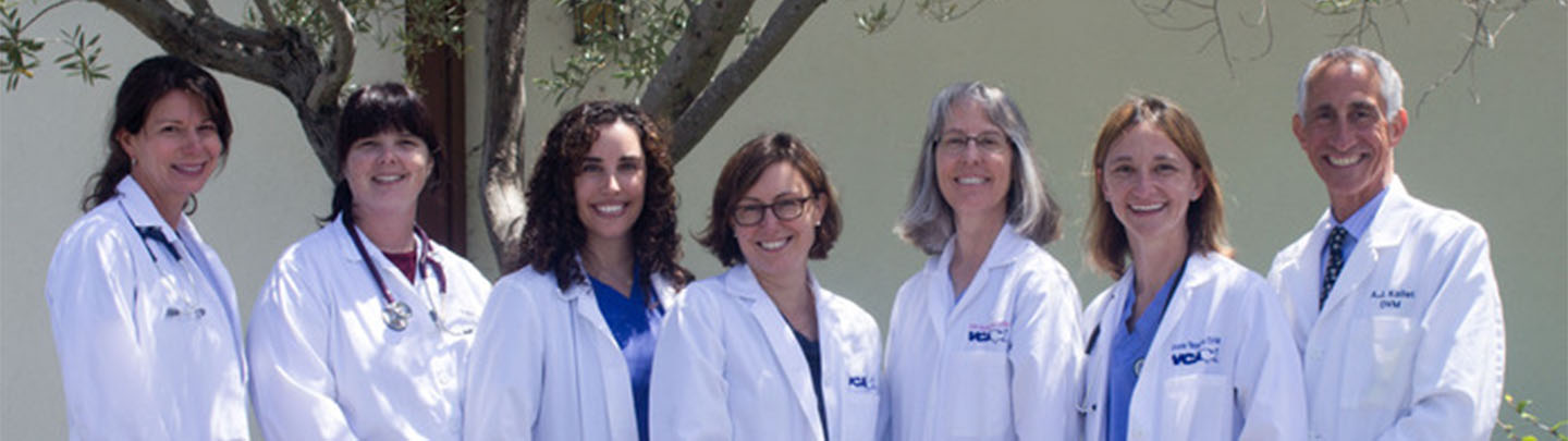 Team Picture of VCA Madera Pet Animal Hospital