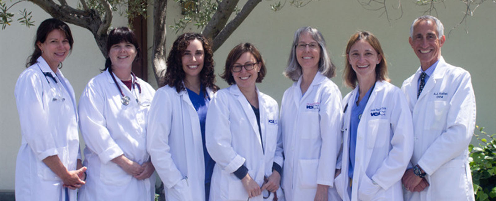 Homepage Team Picture of VCA Madera Pet Hospital