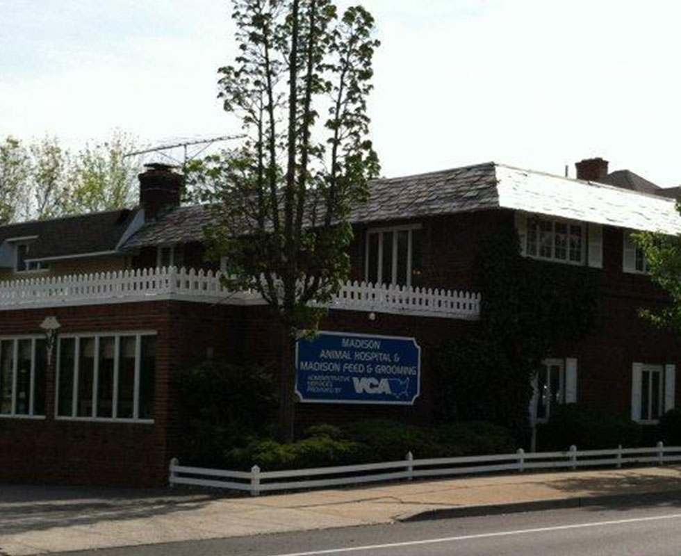 Hospital Picture of VCA Madison Animal Hospital