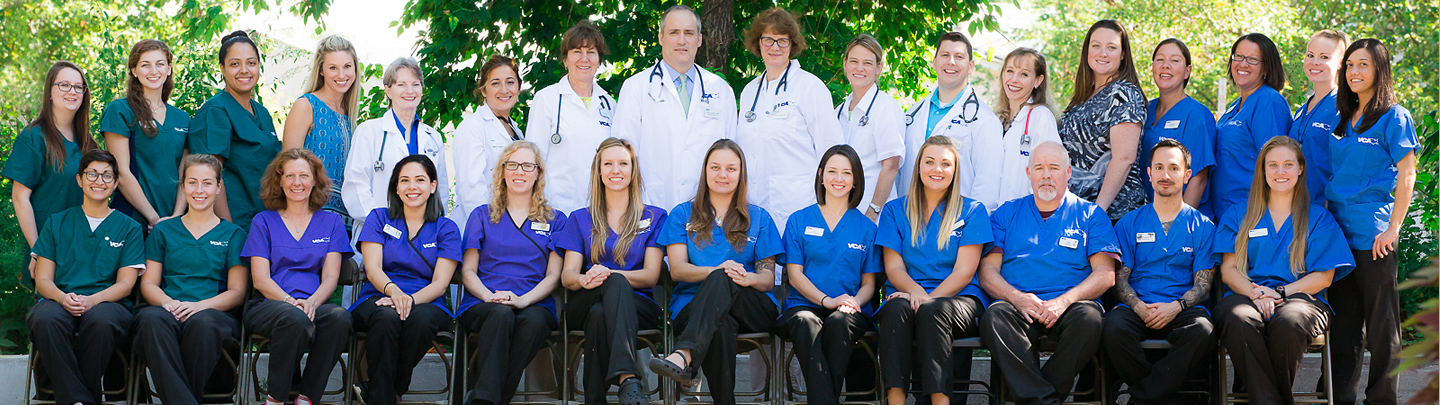 Team Picture of Madison Animal Hospital