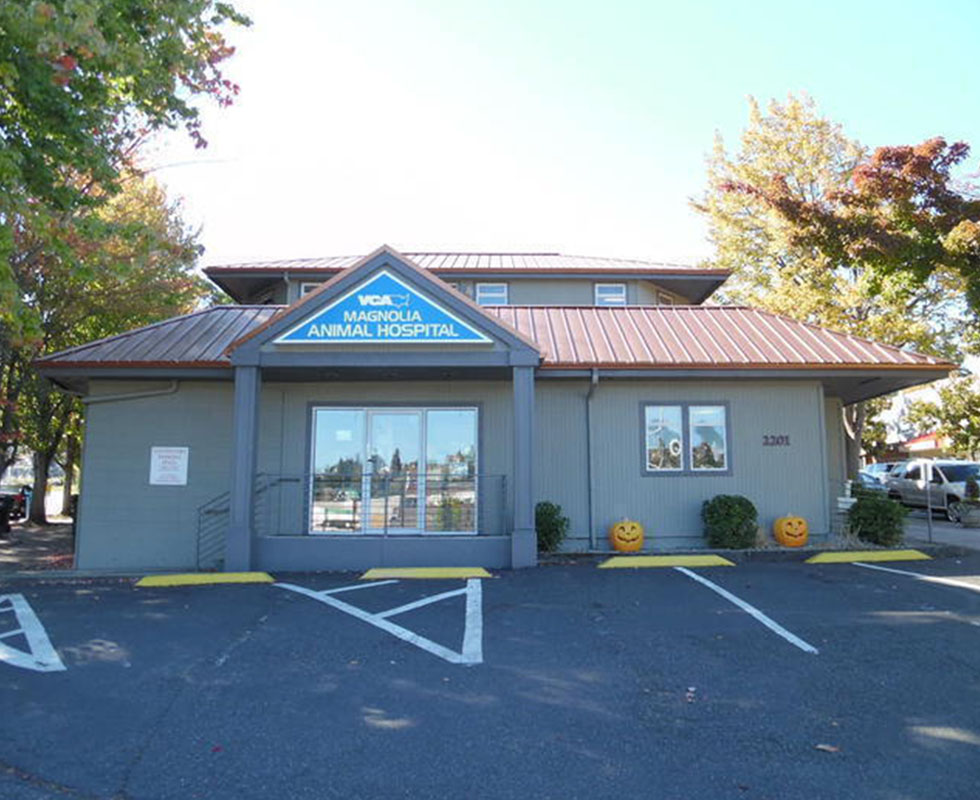 Hospital Picture of  VCA Magnolia Animal Hospital