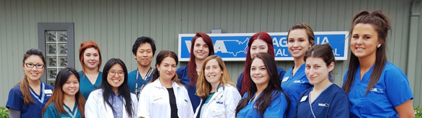Team Picture of VCA Magnolia Animal Hospital