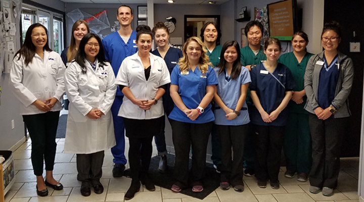 Homepage Team Picture of VCA Magnolia Animal Hospital