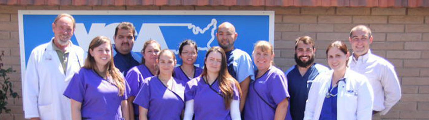 Team Picture of VCA Main Street Animal Hospital