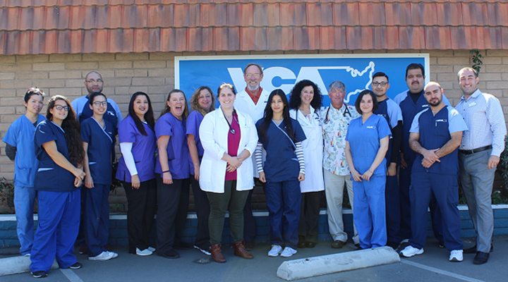 Homepage Team Picture of VCA Main Street Animal Hospital