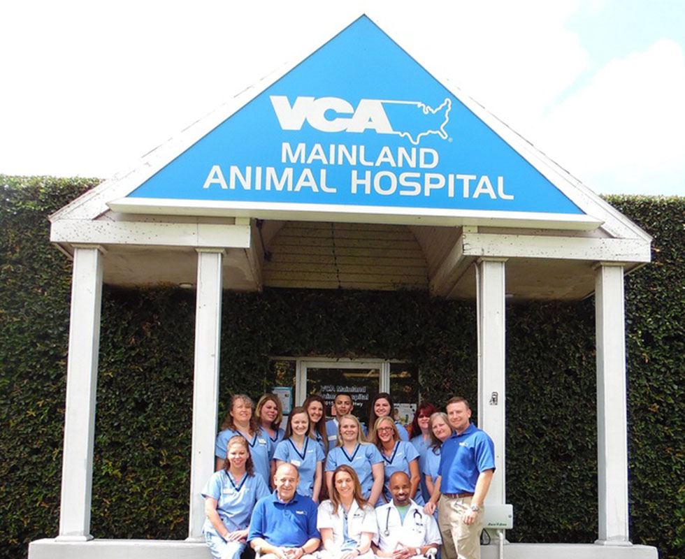 Hospital Picture of  VCA Mainland Animal Hospital