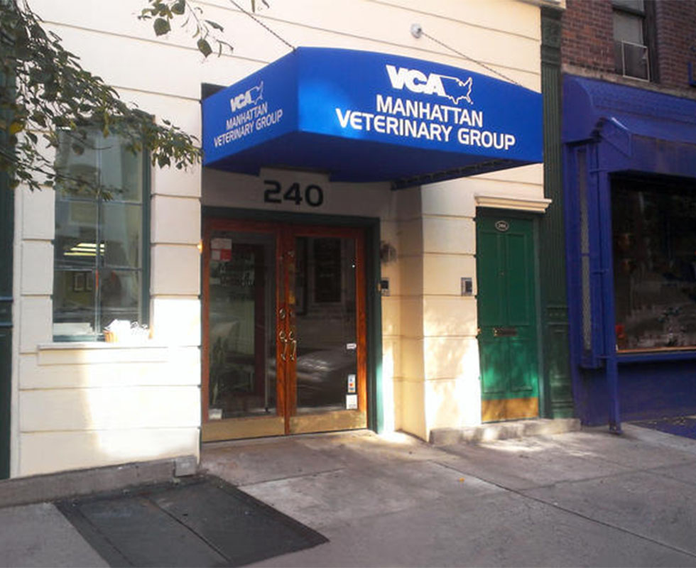 Hospital Picture of VCA Manhattan Veterinary Group