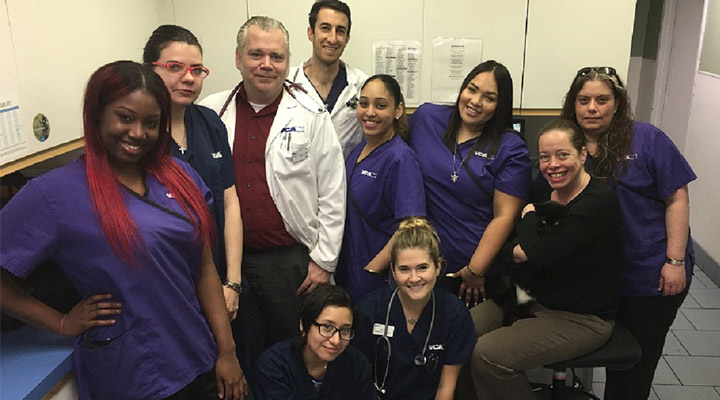 Homepage Team Picture of VCA Manhattan Veterinary Group