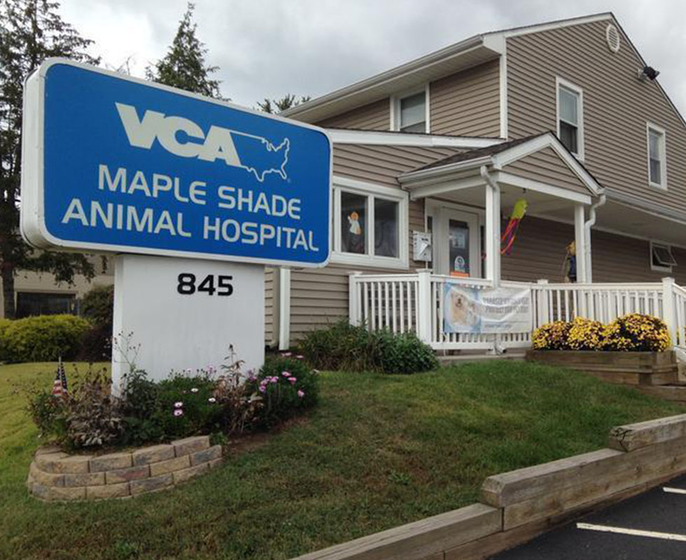 Hospital Picture of VCA Maple Shade Animal Hospital