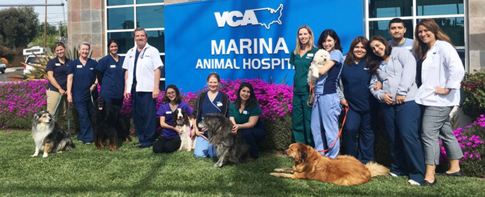 Homepage Team Picture of VCA Marina Animal Hospital